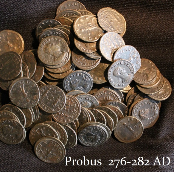 Probus-Hoard-R