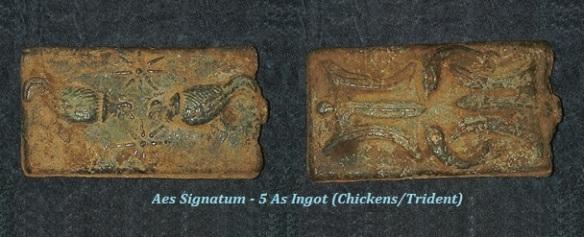 AesSignatum-Chickens